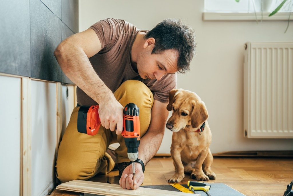 man refurnishing his home while puppy watches