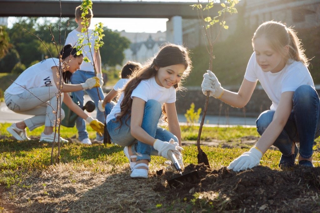 children helping with planting trees