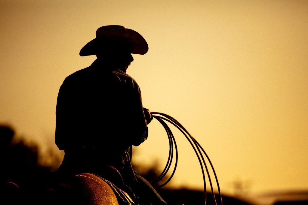 owboy with lasso silhouette at small-town rodeo